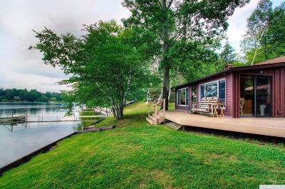 Copake Single Family Home For Sale: 138 Cove Road