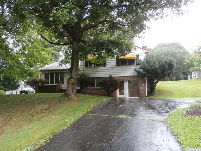 Claverack Single Family Home For Sale: 793 Route 217