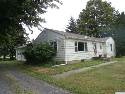 Claverack Single Family Home For Sale: 101 Route 217