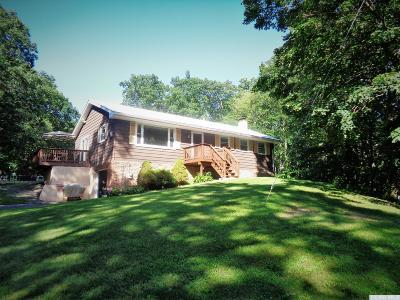 Greene County Single Family Home For Sale: 496 Mountain Road