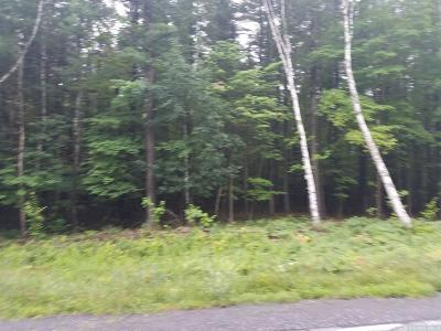 Albany County Residential Lots & Land For Sale: Coiunty Route 353