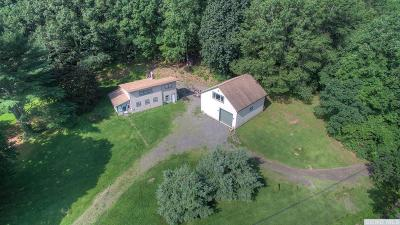 Greene County Single Family Home For Sale: 1232 High Falls Road