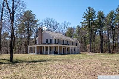 Columbia County Single Family Home For Sale: 1040 County Route 13
