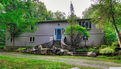 Copake Single Family Home For Sale: 86 Julianna Drive