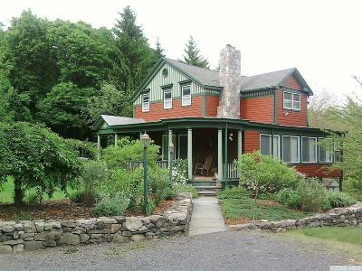 Greene County Single Family Home For Sale: 172 Schoharie Turnpike
