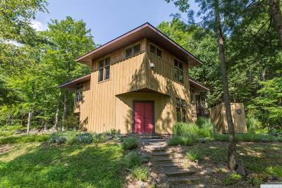 Albany County Single Family Home For Sale: 1246 Switzkill Road