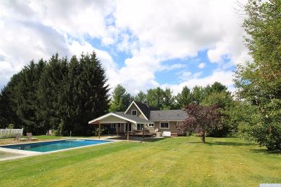 Columbia County Single Family Home For Sale: 755 Route 82