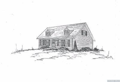 Copake Single Family Home For Sale: 8 Artford