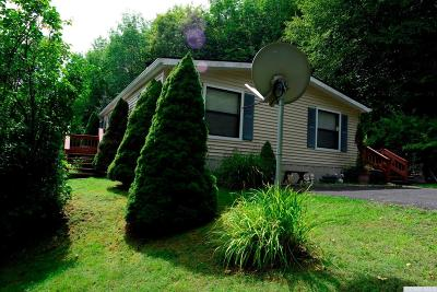 Prattsville Single Family Home For Sale: 281 Dent Road