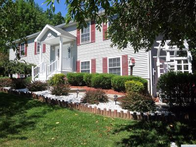 Dutchess County Single Family Home For Sale: 5 Country View Road
