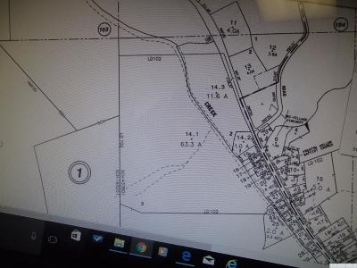 Albany County Residential Lots & Land For Sale: Rt. 145