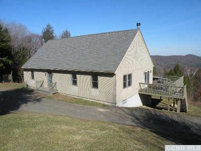 Columbia County Single Family Home For Sale: 234 Shaker Ridge Drive