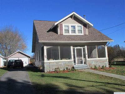 Albany County Single Family Home For Sale: 28 County Rt 1