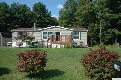 Durham Single Family Home For Sale: 1159 Route 20