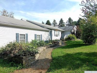 Copake Single Family Home For Sale: 714 Center Hill Road
