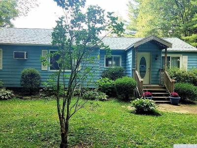 Columbia County Single Family Home For Sale: 61 Hunt Road