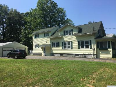 Albany County Single Family Home For Sale: 21 Elm Avenue