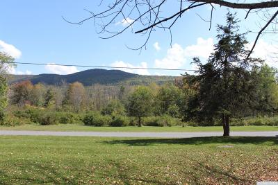 Prattsville Residential Lots & Land For Sale: Route 11