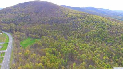Windham Residential Lots & Land For Sale: Route 23