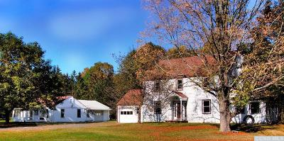 Copake Single Family Home For Sale: 2310 County Route 7