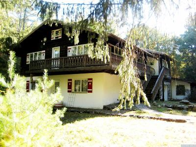Greene County Single Family Home For Sale: 1127 Hearts Content Road