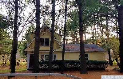 Columbia County Single Family Home For Sale: 457 Route 71