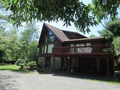 Windham NY Single Family Home For Sale: $524,000