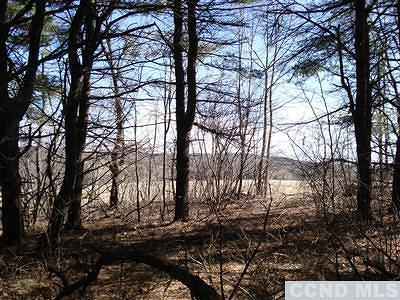 Chatham Residential Lots & Land For Sale: Cty Rte 9