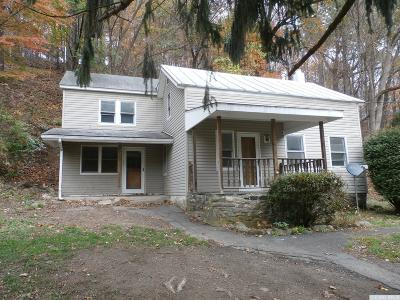 Columbia County Single Family Home For Sale: 223 County Route 16