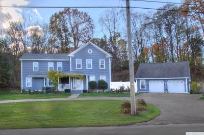 Albany County Single Family Home For Sale: 1071 State Route 143