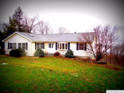 Greene County Single Family Home For Sale: 4738 Susquehanna Turnpike