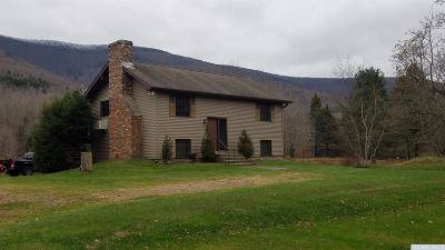 Greene County Single Family Home For Sale: 8935 Route 23a