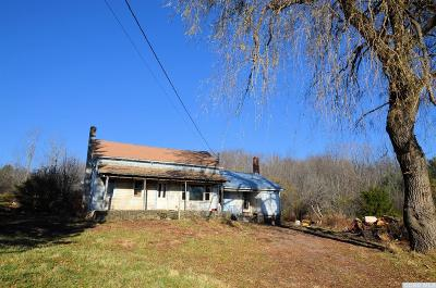 Prattsville Single Family Home For Sale: 817 Route 11