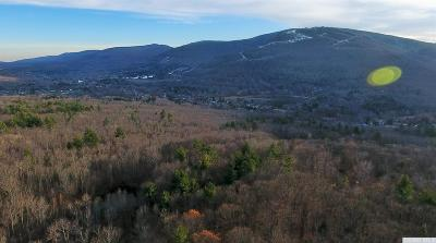 Hunter Residential Lots & Land For Sale: Camp Schoharie Road
