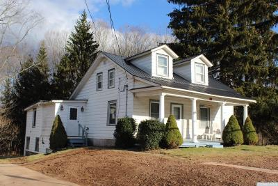 Windham Single Family Home For Sale: 3 County Route 40