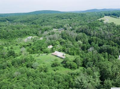 Greene County Single Family Home For Sale: 555 Cauterskill Avenue