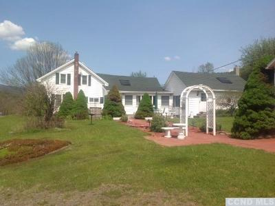 Greene County Single Family Home For Sale: 12102 Rt 23a