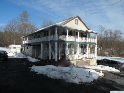 Greene County Multi Family Home For Sale: 14 Mountain Turnpike