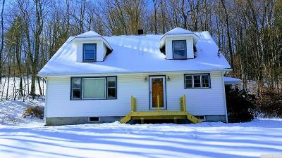 Hunter Single Family Home For Sale: 265 Scribner Hollow Road