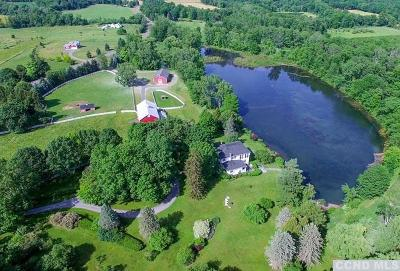 Ghent Single Family Home For Sale: 654 County Route 9