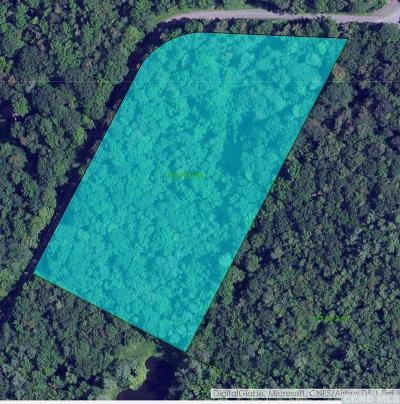 Jewett Residential Lots & Land For Sale: 250 Wilderness Road