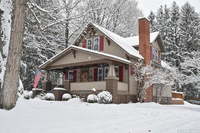 Columbia County Single Family Home For Sale: 83 Kinderhook Street