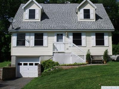 Copake Single Family Home For Sale: 7 Fairview Drive