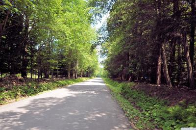 Jewett Residential Lots & Land For Sale: 64 Park Road