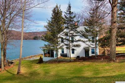 Copake Single Family Home For Sale: 46 Southwest Colony