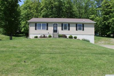 Claverack Single Family Home For Sale: 8 Martindale Road