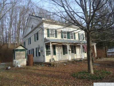 Durham Single Family Home For Sale: 7830 Route 81