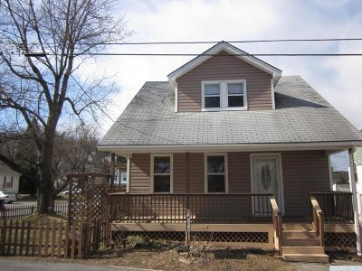 Hudson Single Family Home For Sale: 7 Carle Avenue