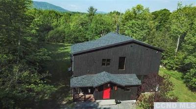 Windham NY Single Family Home For Sale: $475,000