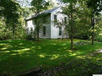 Chatham Single Family Home For Sale: 229 State Route 295